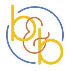 BNB SERVICES LOGO copy